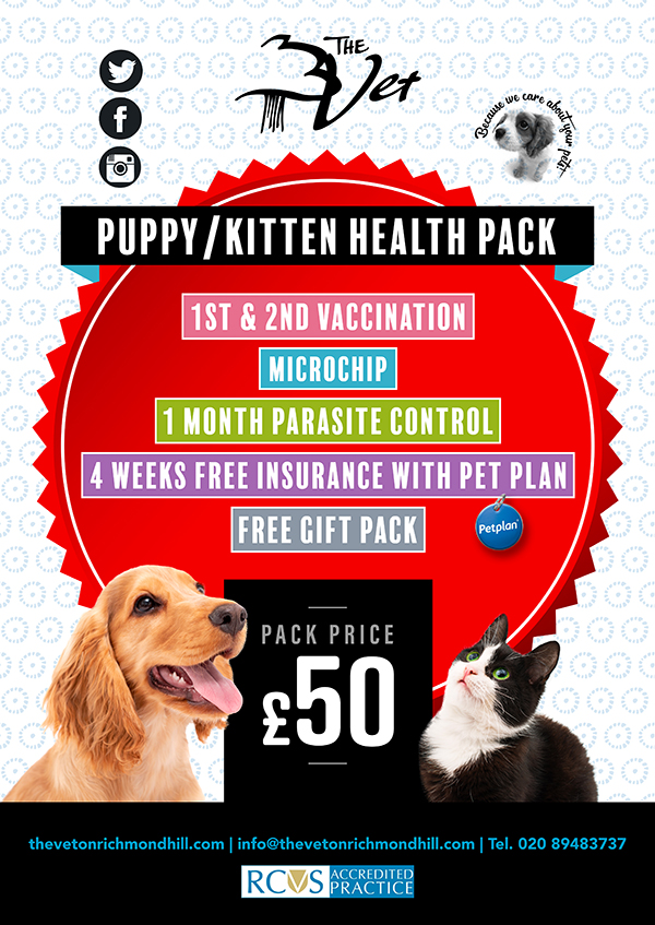 PUPPY-KITTEN-PACK-POSTER-web